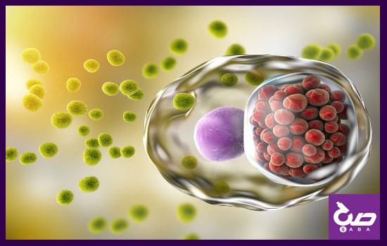 بیماری کلامیدیا و آزمایش مربوط به آن